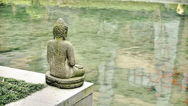 Meditazione Vipassana - sforzo gioioso