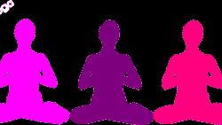meditazione vipassana: c'è ne è più di una?
